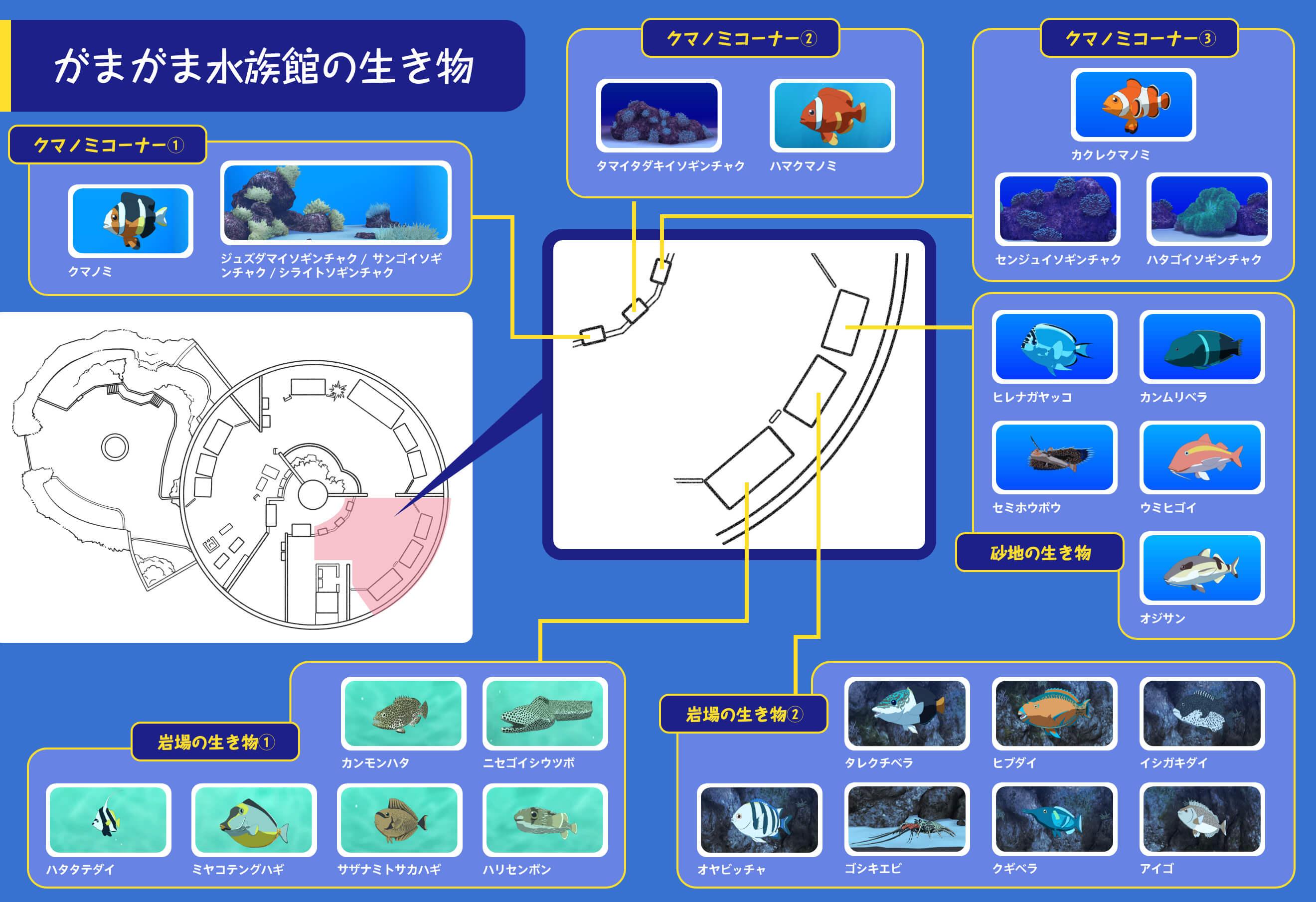 がまがま水族館の生き物2