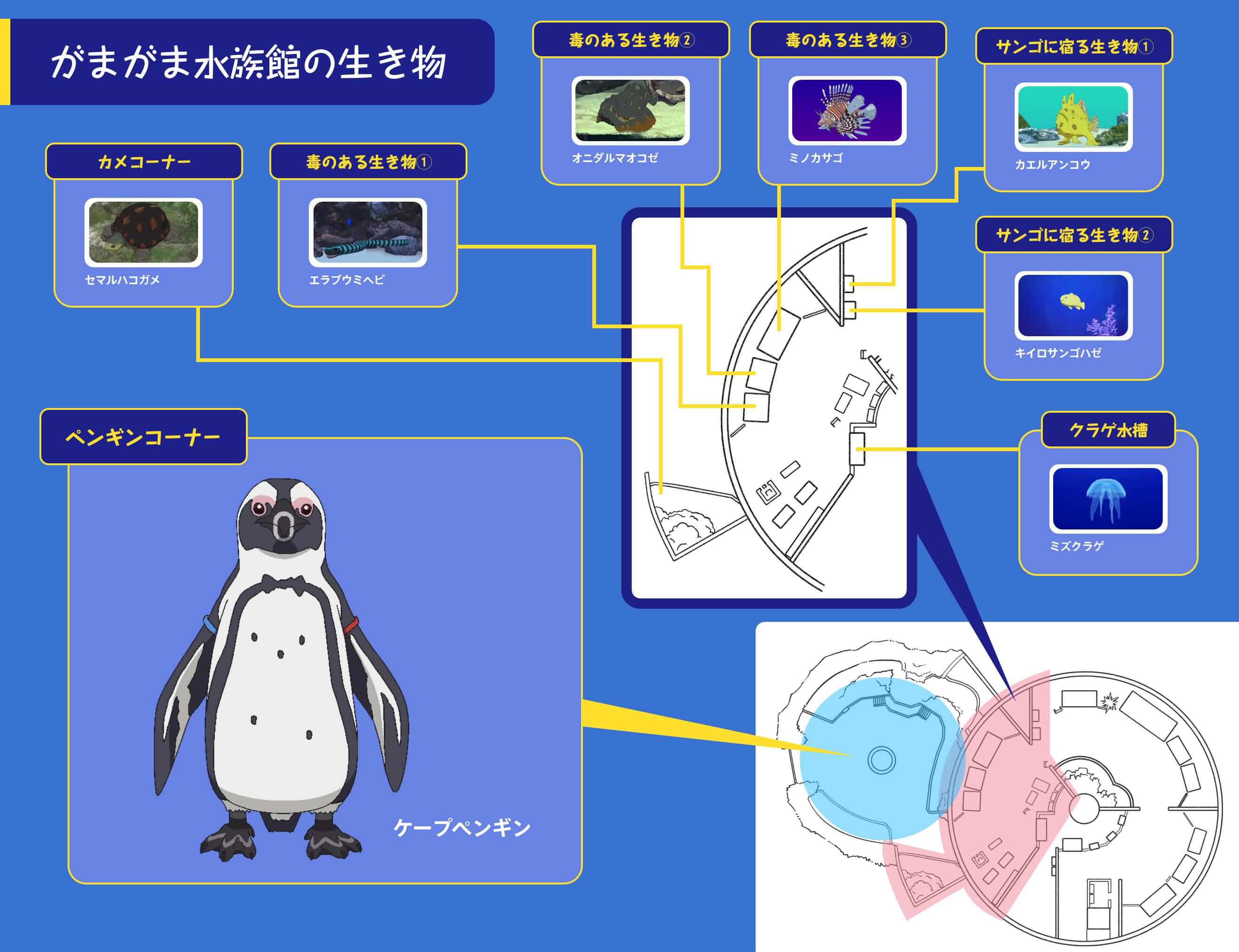 がまがま水族館の生き物4